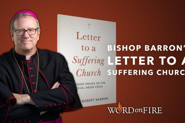 Bishop Barron's Videos & Discussion Questions
